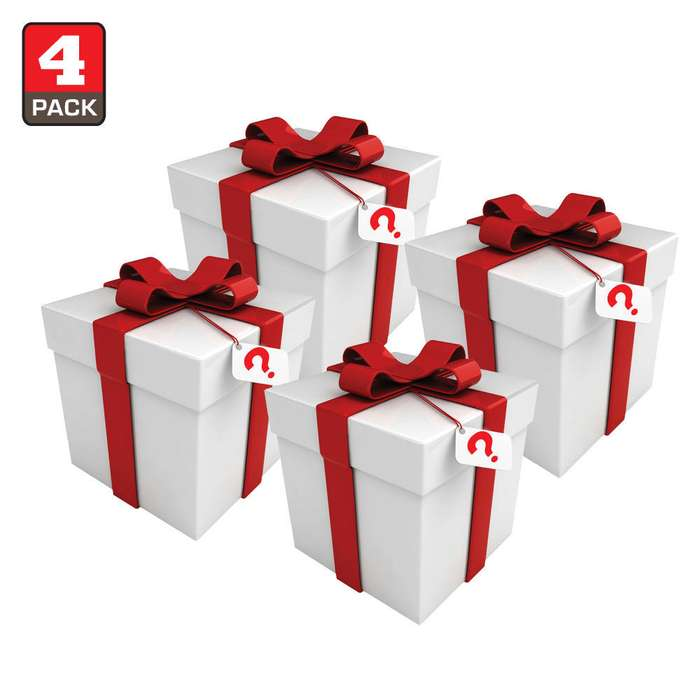 Miscellaneous Small Gift/Novelty Scratch & Dent Mystery Bag Four Pieces