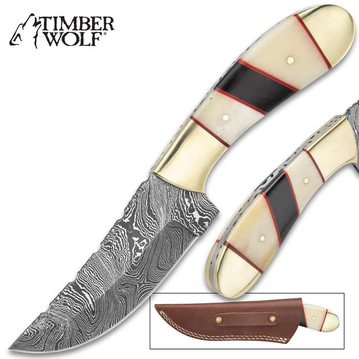 Timber Wolf Legion Knife And Sheath - Damascus Steel Blade, Fileworked Spine, Bone Handle Scales, Stainless Steel Pommel - Length 9""