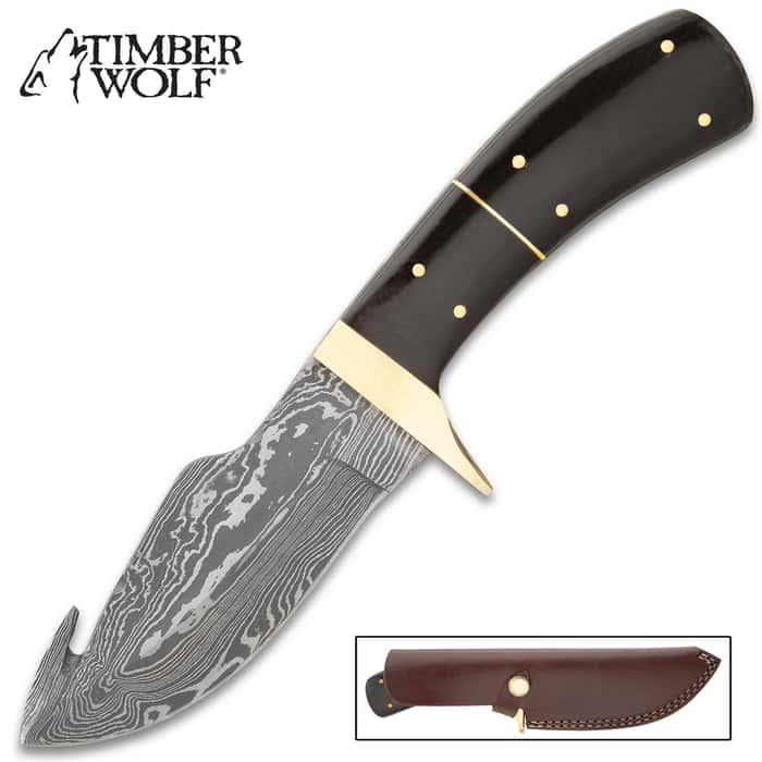 "Timber Wolf Black Creek Knife With Sheath - Damascus Steel Blade, Gut Hook, Buffalo Horn Handle Scales, Brass Guard - Length 9"""