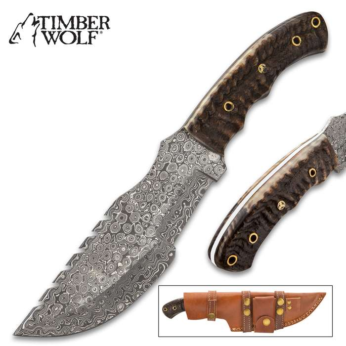 "Timber Wolf Tiger Shark Tracker Knife With Sheath - Damascus Steel Blade, Sawback, Ram Horn Handle Scales, Brass Lanyard Holes - Length 12"""