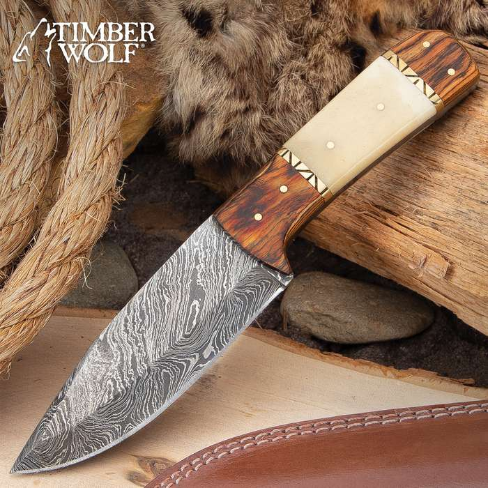 """Timber Wolf Matterhorn Knife With Sheath - Damascus Steel Blade, Bone And Wood Handle Scales, Brass Pins, Brass Fileworked Spacers - Length 9"""""""