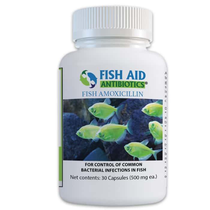 Fish 500 mg Amoxicillin Antibiotics - 30 Tablets