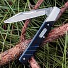Buck Solo Clip Point Folding Pocket Knife G10