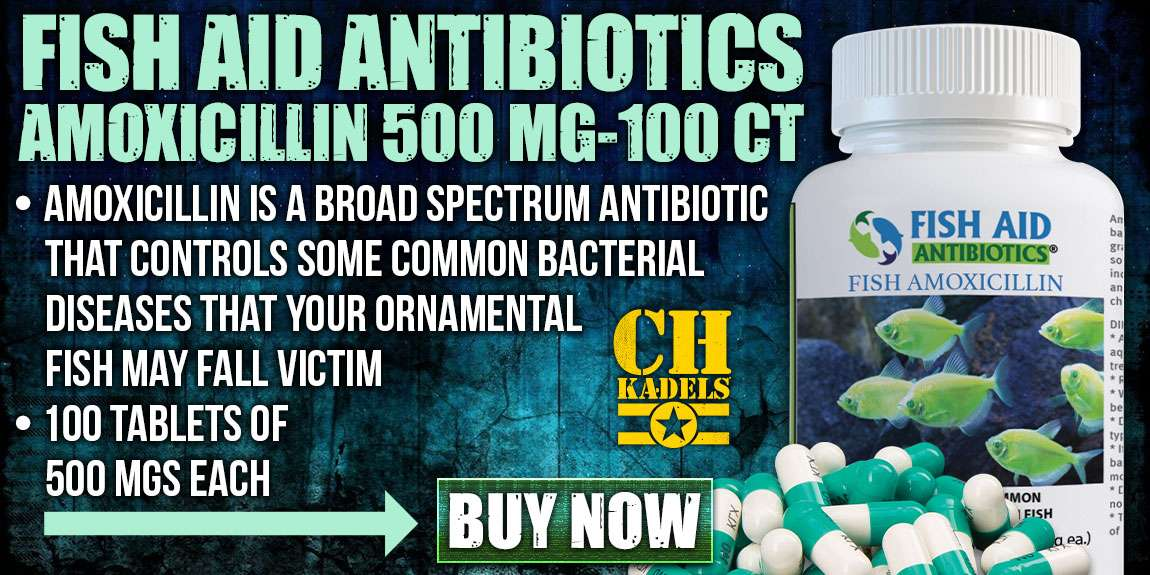 Fish Aid Antibiotics Amoxicillin 500 Mg