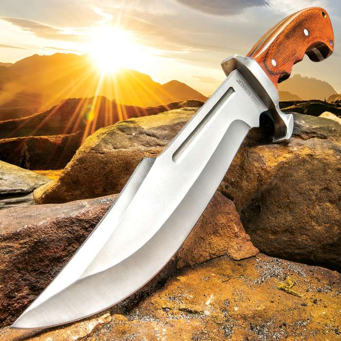 Ridge Runner Woodland Reverie Bowie / Fixed Blade Knife - Stainless Steel, Full Tang - Genuine Zebrawood - Nylon Sheath - Collecting, Field Use, Display and More - 13 1/4""