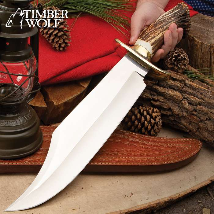 Timber Wolf King Stag Antler Crown Knife With Sheath - Stainless Steel Blade, Genuine Horn Handle, Brass Handguard - Length 22 1/2""
