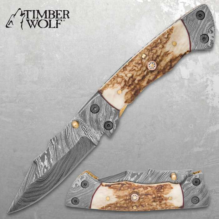 Timber Wolf Damascus And Stag Horn Pocket Knife - Damascus Steel Blade, Stag Horn Handle, File Worked Brass Liners - Closed 4 1/2""