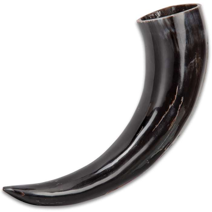 Buffalo Drinking And Display Horn - Crafted Of Genuine Horn, High-Polished Ebony Sheen - Length 12 1/2""