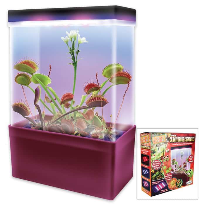 Carnivorous Creatures LED Lit Bog