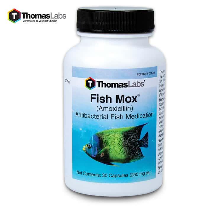 Fish Mox Amoxicillin 250 Mg - 30-Count