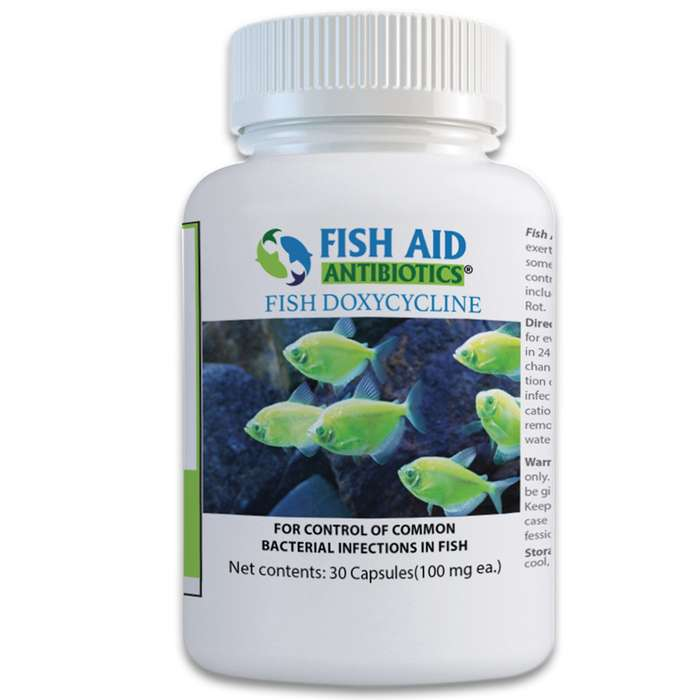 Fish 100 mg Doxycycline Antibiotics - 30-Count Bottle