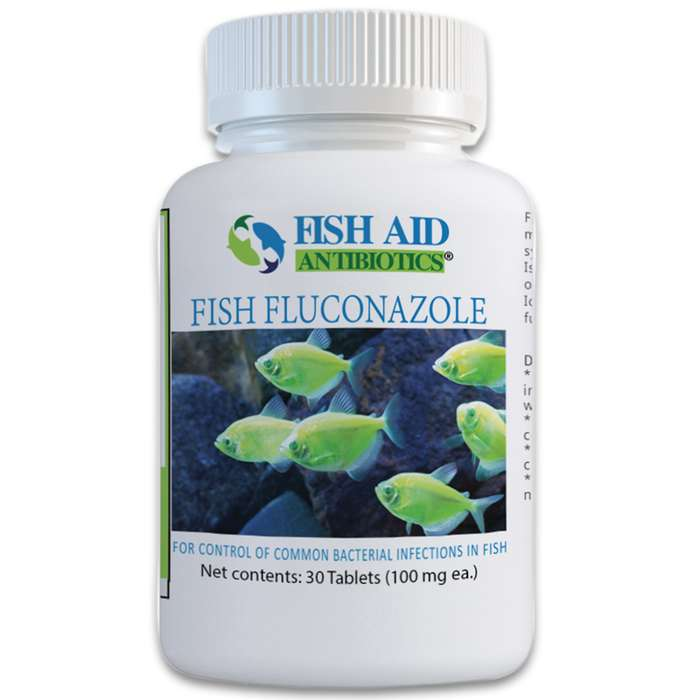 Fluconazole is effective against topical and systematic fungal infections that your ornamental fish may fall victim to