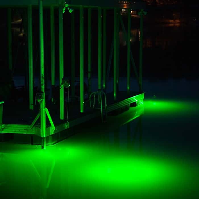 Dockmaster 4 FT. Green LED Dock Light - 120V