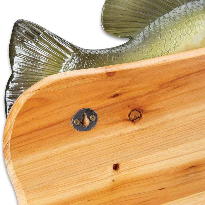 Crappie Fish Coat Rack - Natural Fir Wood Construction And Hand-Painted Poly-Resin, Incredibly Realistic, Two Coat Pegs