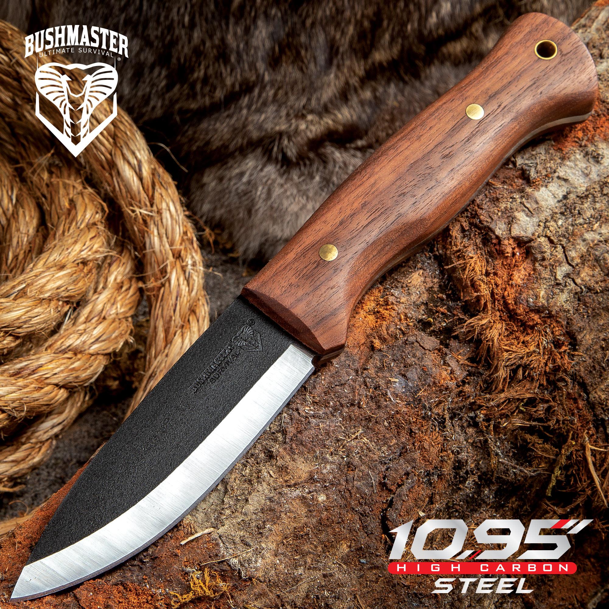 "Bushmaster Bushcraft Explorer Fixed Blade Knife - 1095 Carbon Steel Blade,  Zebra Wood Handle, Brass Pins And Lanyard Hole - Length 9 5/8"""