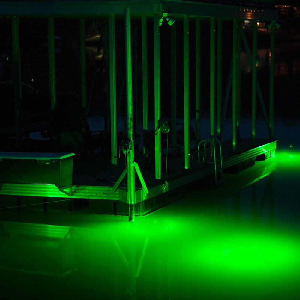 Premium deepwater green fishing light 30w 12v chkadels for Green fishing lights