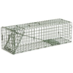 Duke Standard Medium Animal Non-Lethal Cage Trap - Rabbits, Large Squirrels and More