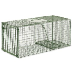Duke Heavy Duty Large Animal Non-Lethal Cage Trap - Raccoons, Cats, Armadillos and More