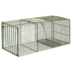 Duke Heavy Duty Extra Large Non-Lethal Cage Trap - Large Raccoons, Foxes, Cats and More