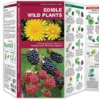 Edible Wild Plants Folding Pocket Guide