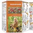 Mushrooms Folding Pocket Guide