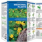 Medicinal Plants Folding Pocket Guide