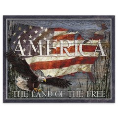 America: The Land of the Free Rustic Tin Sign