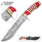 Timber Wolf Kilimanjaro Bowie Knife – Damascus Steel Blade, Buffalo Horn Handle, Brass Guard And Pommel – Length 14""