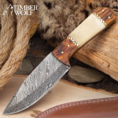 Timber Wolf Matterhorn Knife With Sheath - Damascus Steel Blade, Bone And Wood Handle Scales, Brass Pins, Brass Fileworked Spacers - Length 9""