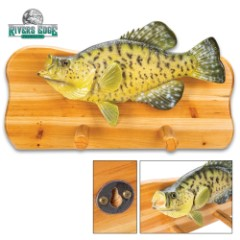 Crappie Fish Coat Rack – Natural Fir Wood Construction And Hand-Painted Poly-Resin, Incredibly Realistic, Two Coat Pegs