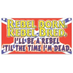 """Rebel Born and Bred"" 4"" x 8"" Waterproof Car Magnet"