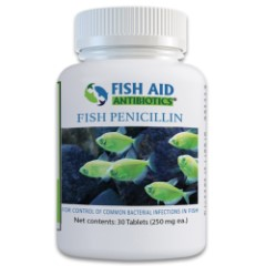 Fish Pen Penicillin 250 MG 30 Count
