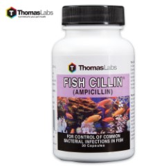 Fish Cillin Ampicillin 250 MG – 30-Count